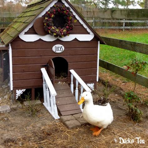 duck house gingerbread duck house plans pdf room in coop for up to 6