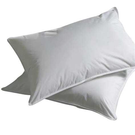 buy goose feather pillow 20 80 in india