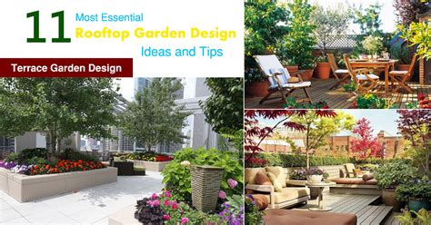 Ideas For Terrace Garden 11 Most Essential Rooftop Garden Design Ideas And Tips Terrace Garden Design Balcony Garden Web