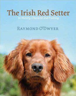 irish setter dog books the irish red setter it s history character and training