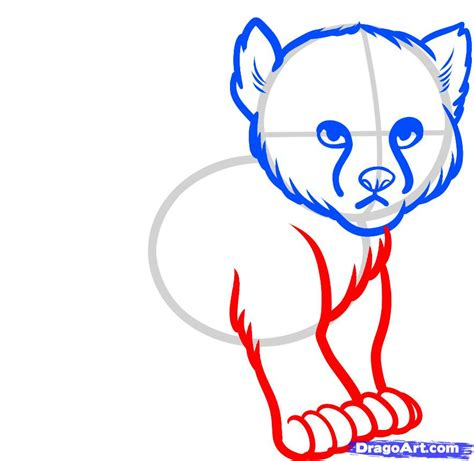 doodle drawing how to how to draw a baby cheetah baby cheetah step by step