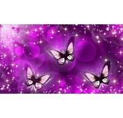 Animated Butterfly Wallpaper  WallpaperSafari