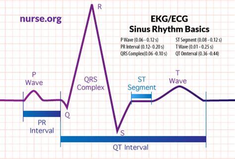wave pattern of organization how to read an electrocardiogram ekg ecg nurse org