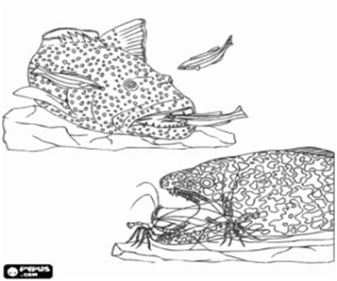 juego cadena alimentaria online juegos de peces para colorear imprimir y pintar