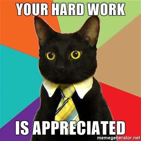 Work Hard Meme - image gallery hard work cat meme