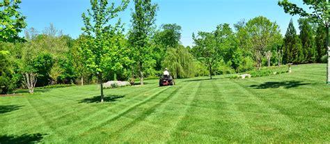 giardini verdi manutenzione ordinaria delle aree verdi verde cabiria