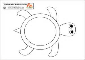 turtle pattern printable and print the turtle pattern apps directories