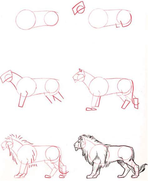 doodle draw tutorial a lot of animal drawing tutorial