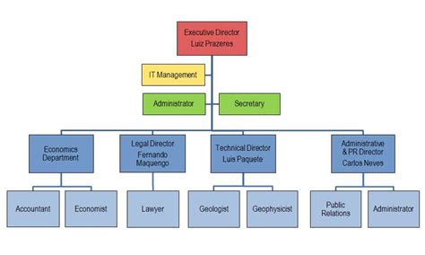 company organogram template word anp organogram