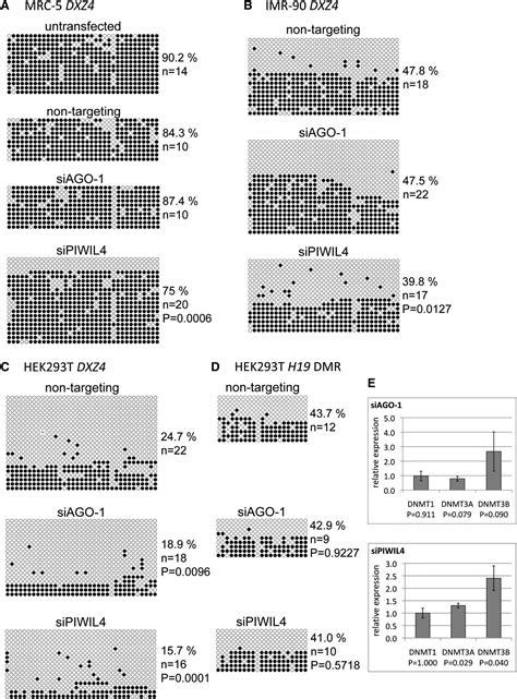 pattern recognition receptors in plants download plant pattern recognition receptors methods and