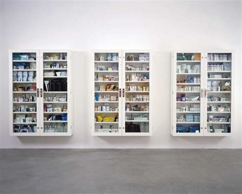 Hirst Medicine Cabinet by Damien Hirst Medicine Cabinets 87 On Retro