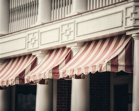 french canopy awning 59 best images about awnings on pinterest colored front