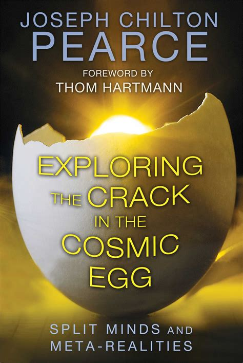 cosmic in books exploring the in the cosmic egg book by joseph