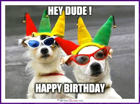 Birthday Dog Meme - happy birthday dog images www pixshark com images