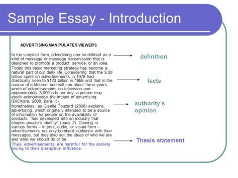 layout argumentative essay argument essay layout costa ballena