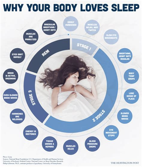 Do You Detox While You Sleep by Your Does Things When You Aren T Awake