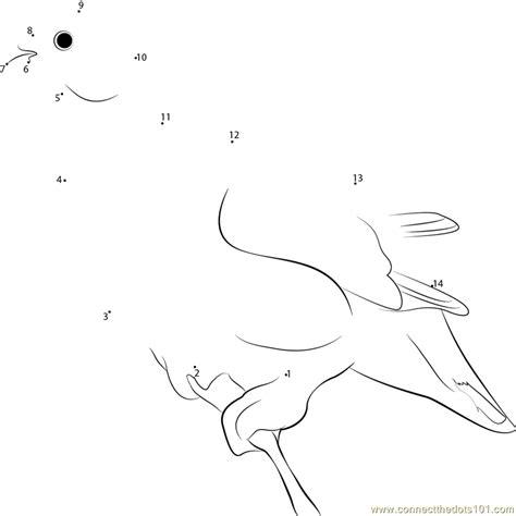 printable dot to dot winter willow ptarmigan winter plumage dot to dot printable