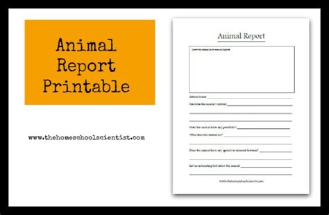 free printable animal report animal report printable