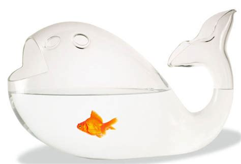 Fish Shaped Fish Bowl by Creative Functional Fish Bowls And Tanks