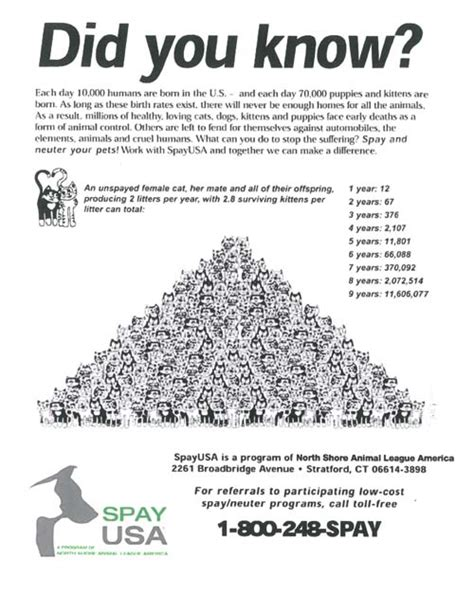 how many dogs are in the united states our numbers at a glance