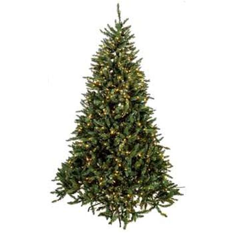 7 1 2 frasier fir tree with lights hobby lobby