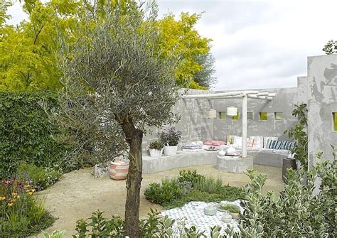 baum für garten idee mediterran terrasse