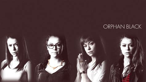 wallpaper hd orphan black orphan black wallpaper orphan black wallpaper 36113264