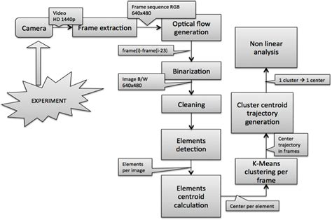 workflow theory entropy free text application of entropy and