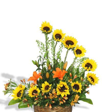 arreglo floral de girasoles sol f 0028 | arreglos florales