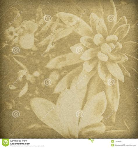printable paper no watermark flower print background royalty free stock images image