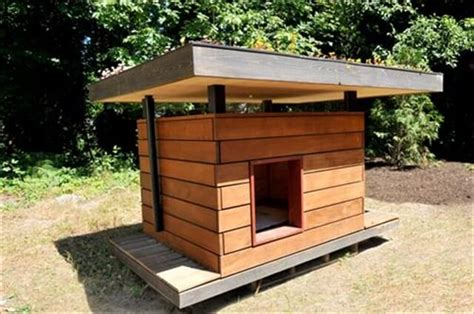 dog house diy 11 diy pallet doghouse ideas diy to make