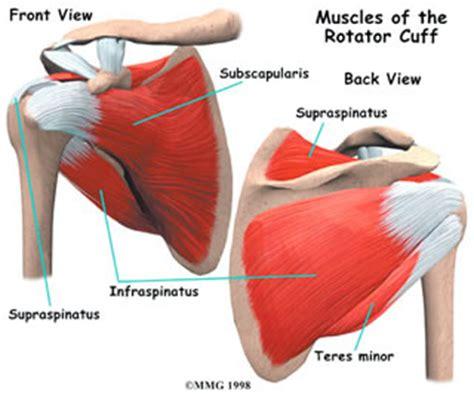 rotator cuff injury from bench press bench press rotator cuff injury rotator cuff syndrome relief vinci health nyc doing