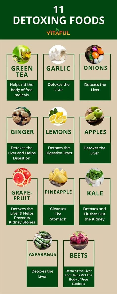 Detox For Seniors by 25 Best Ideas About Kidney Cleanse On Kidney