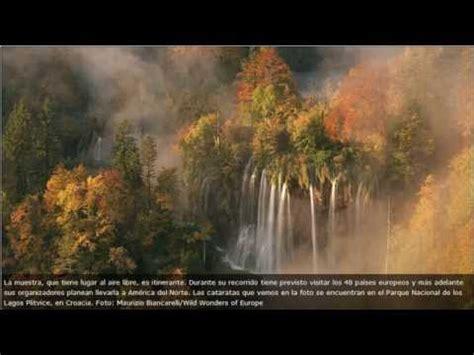 imagenes de paisajes con animales fotos de europa paisajes y animales su naturaleza
