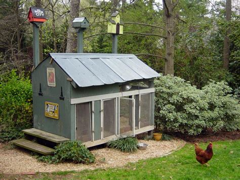 chicken coops for backyard flocks hgtv