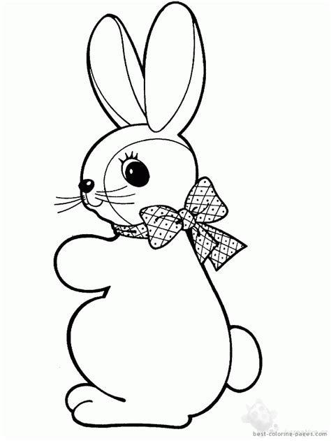 blank bunny coloring page coloring pages bunnies coloring home