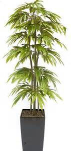 Trailing Hanging Basket Foliage Plants - artificial slim mango tree and artificial handbuilt trees at evergreen