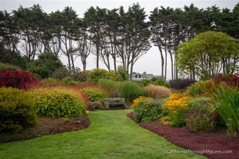 mendocino botanical gardens near fort bragg california