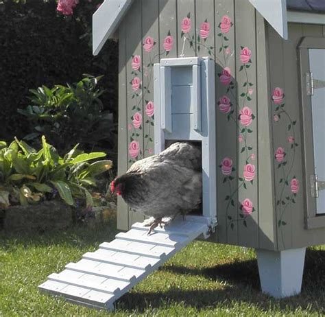 backyard chicken house best 20 hen house ideas on chicken coops