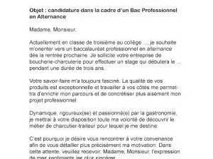 lettre de motivation bac pro arcu par lettreutile