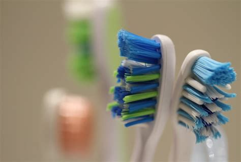 toilet brush tooth brush mouth 25 shocking facts about teeth you probably didn t know
