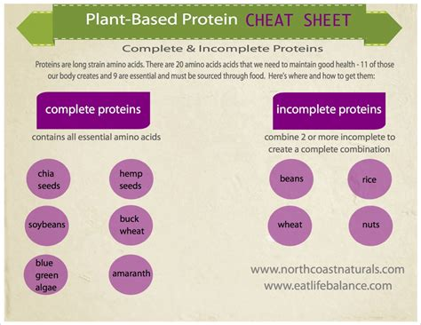 Complete Search Pin Complete Protein Combinations List Image Search