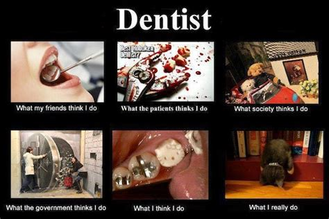 Funny Dentist Memes - funny friday internet memes of dentist beauty blogger