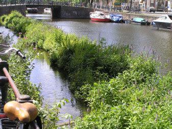 drijvende tuinen amsterdam floatland drijvende eilandjes