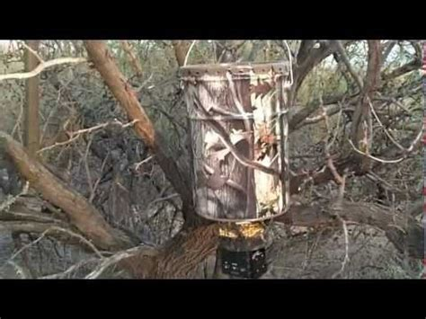 Small Hanging Deer Feeder How To Hang A Deer Feeder From A Tree Part 2 How To Save