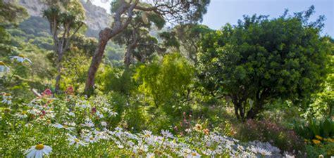 flora amp fauna government of gibraltar