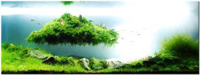 aquascape of the month august 2010 quot beyond the nature
