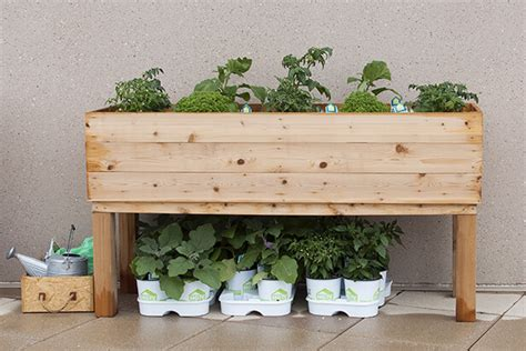 Patio Planter Plans by Planter Box Plans Nifty Homestead