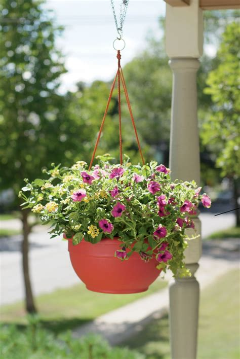 Hanging Flower Garden Hanging Baskets For Plants And Flowers Self Watering Gardeners