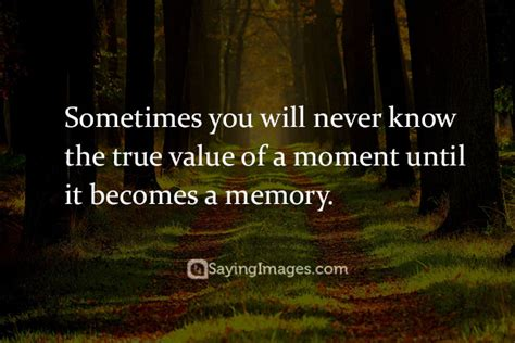 memory quotes top 20 memory quotes sayings sayingimages